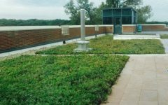 Green Roof Offers New Learning Experiences
