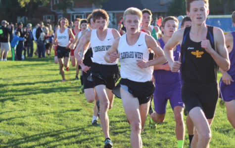 Boys, Girls Cross Country Teams Ready for Postseason