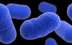 Listeria Outbreak Affects Consumers Across the Nation