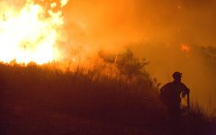 Wildfire Season Rages As Climate Impact Worsens